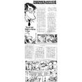 SI34 Poikkeava Vaakku - hyvä sanomalehtisarjakuva